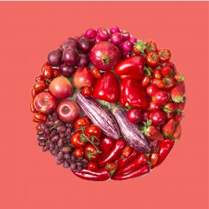 Rainbow Colour Food Carousel FA-01